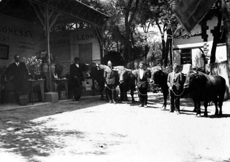 exposicion-de-mantequerias-en-un-congreso-agricola-en-madrid-19301