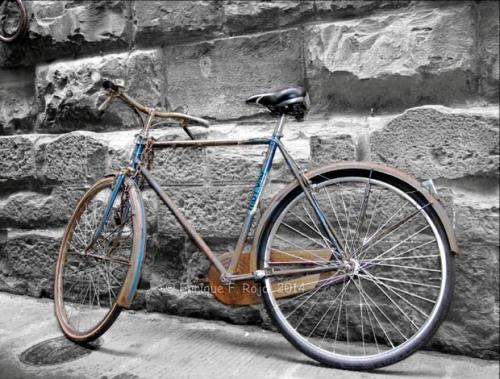 Florencia_Bicicleta_26-06-2014_small